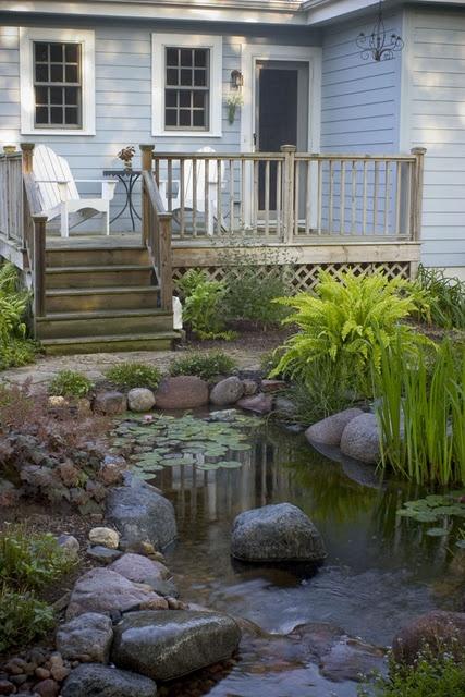 Backyard Pond 3