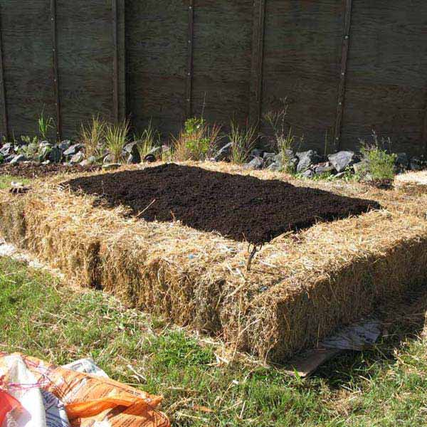 Garden Edging 10