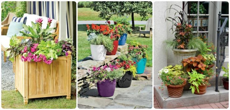 Garden Pots Feat