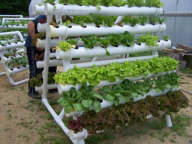 PVC Garden 1