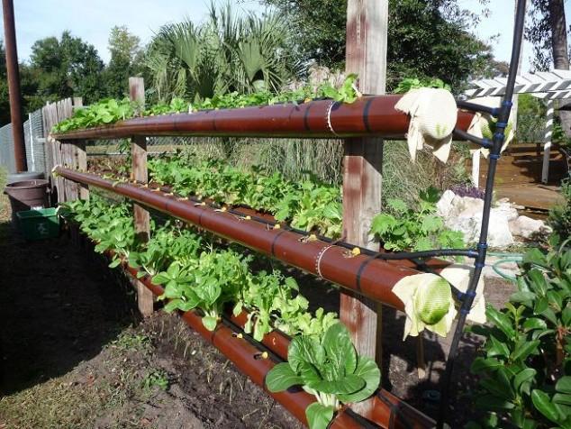 PVC Garden 2