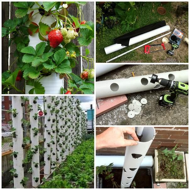 PVC Garden 6