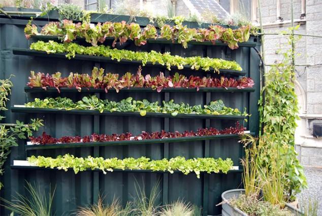 PVC Garden 7