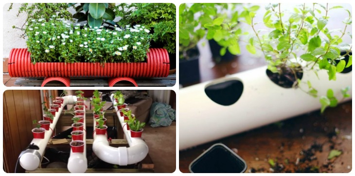 12 original pvc pipe planter ideas for your garden for Ideas for your garden