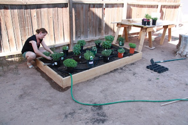 Raised Garden Beds 12