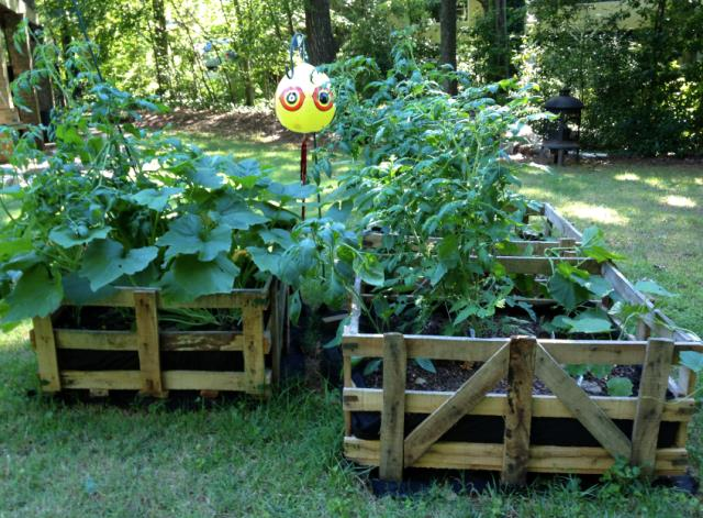 12 Easy Cheap Diy Raised Garden Beds Ideas