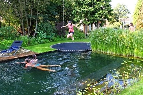 Awesome Backyard 17
