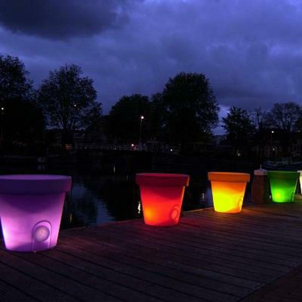 Illuminated Planters 1