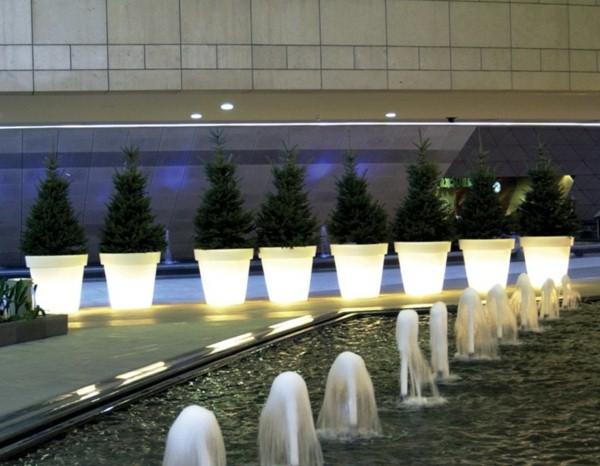 Illuminated Planters 12