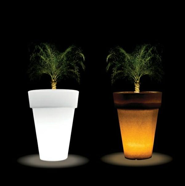 Illuminated Planters 15