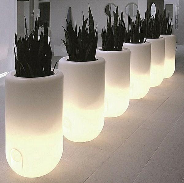 Illuminated Planters 16