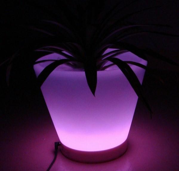 Illuminated Planters 19