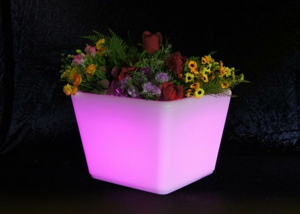Illuminated Planters 20