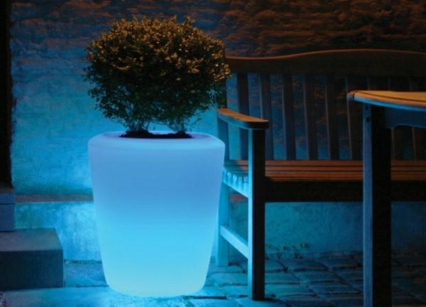 Illuminated Planters 22