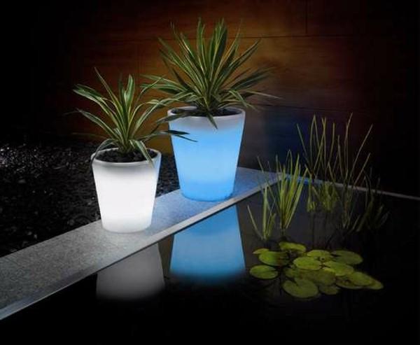 Illuminated Planters 7