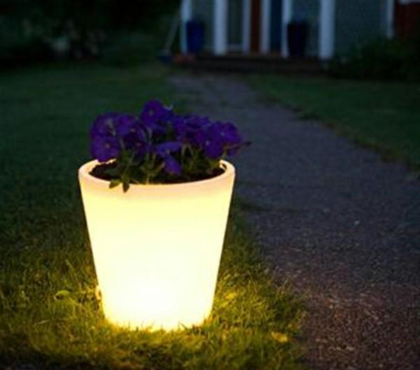 Illuminated Planters 9