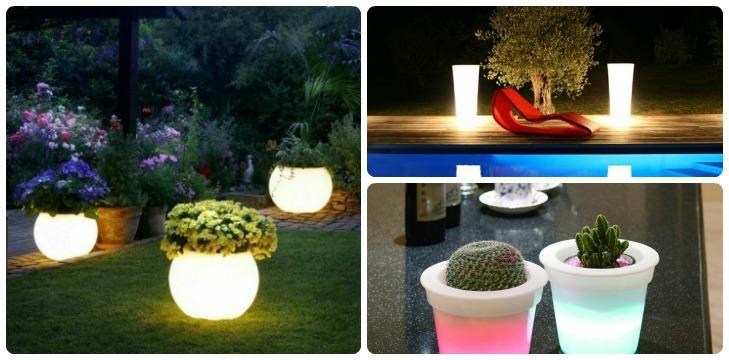 Illuminated Planters Feat