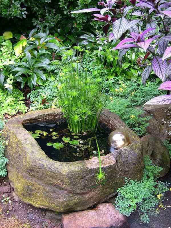 Pond In Pot 15
