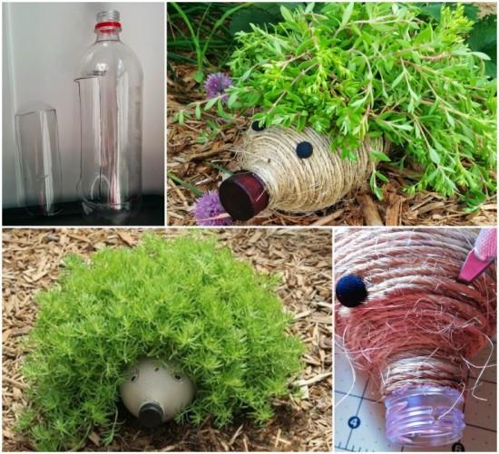 Hedgehog Planters 3