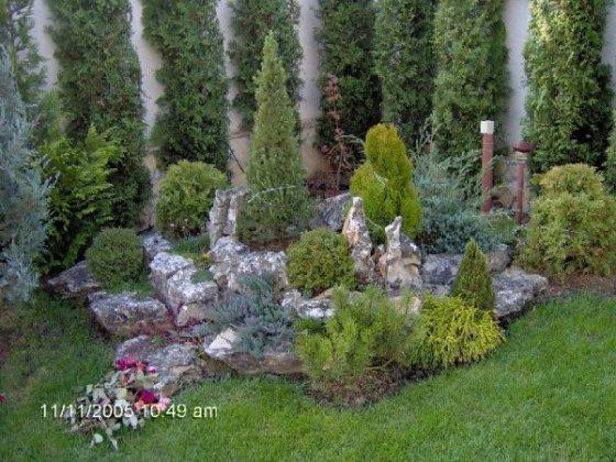 Rock Gardens 5