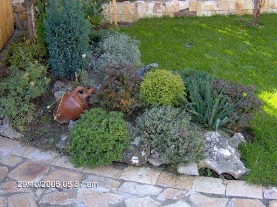 Rock Gardens 7