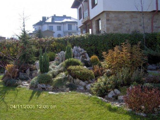 Rock Gardens 8