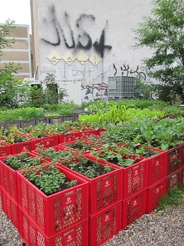 Source: Milk Crate Garden