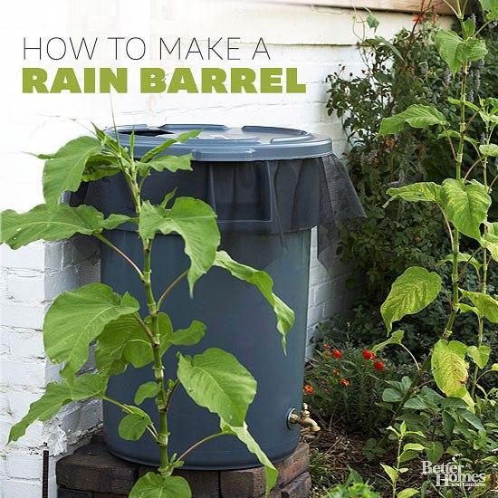 rainwater-harvesting-1