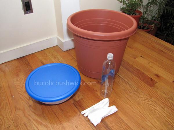 Self watering 2
