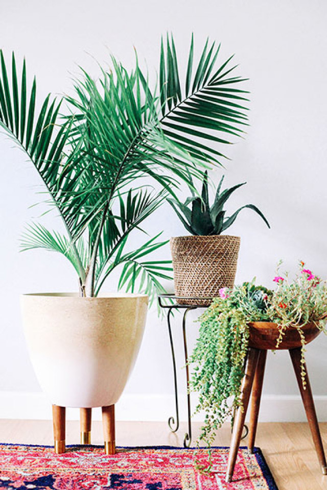 Gorgeous indoor planters you will fall in love with - Fabulous flower stand ideas to display your plants look more beautiful ...