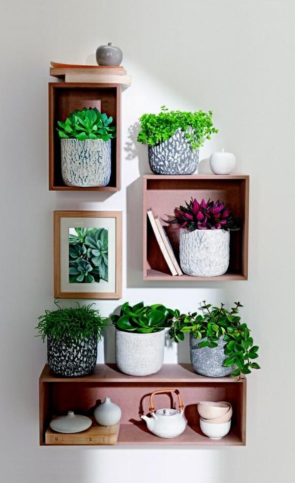 indoor-planters-4