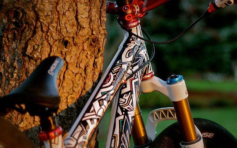 custom-santa-cruz-jackal-1-2