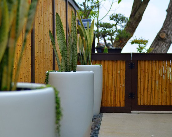 bamboo-fence-12