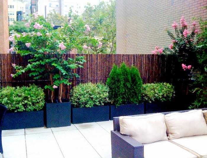 bamboo-fence-7