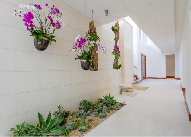 understairs-garden-4