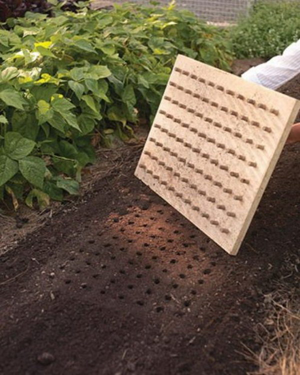13-Use-This-DIY-Planting-Board-To-Create-Perfect-Rows-In-Your-Garden