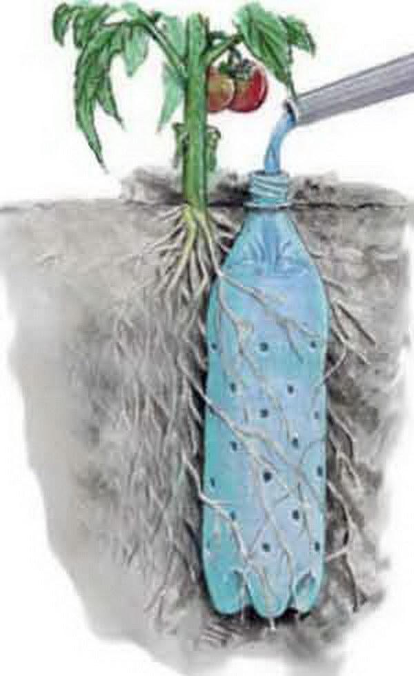 7-Soda-Bottle-Drip-Feeder-for-Garden-Plants