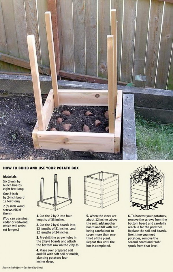 22-Grow-100-lbs-Of-Potatoes-In-4-Square-Feet