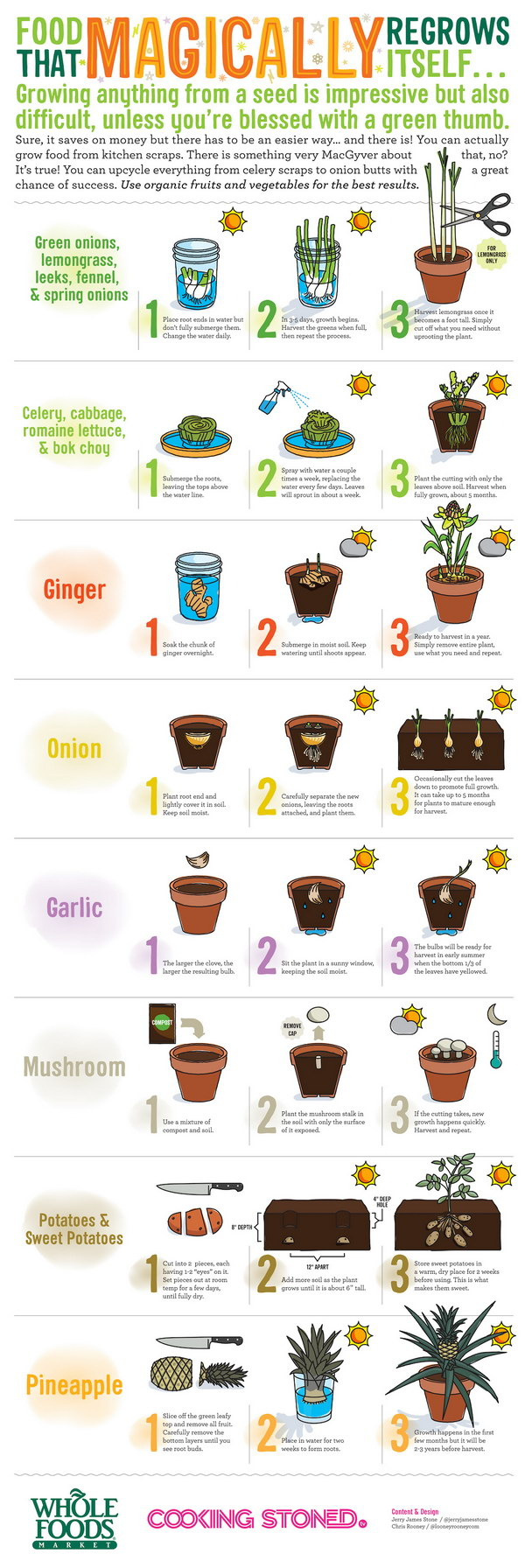 24-Upcycle-Your-Vegetable-Scraps-And-Regrow-Them-Easily-1