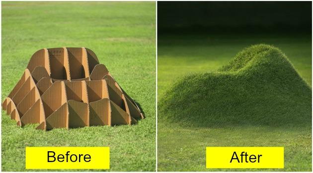 Grass Armchair Feat1