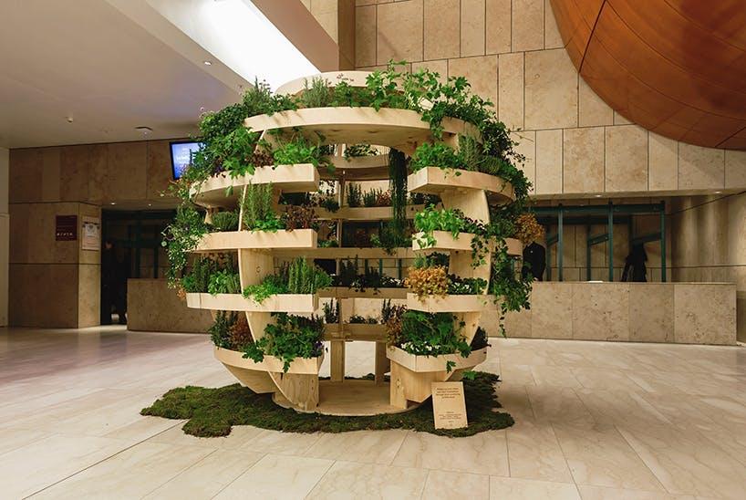 Growroom 6