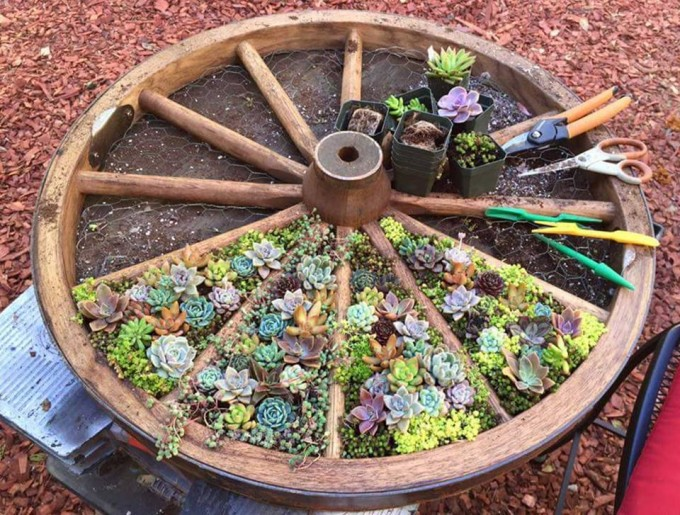 Wagon-Wheel-Garden-