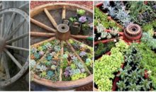 What An Awesome Idea! Make Yourself A Wagon Wheel Garden…