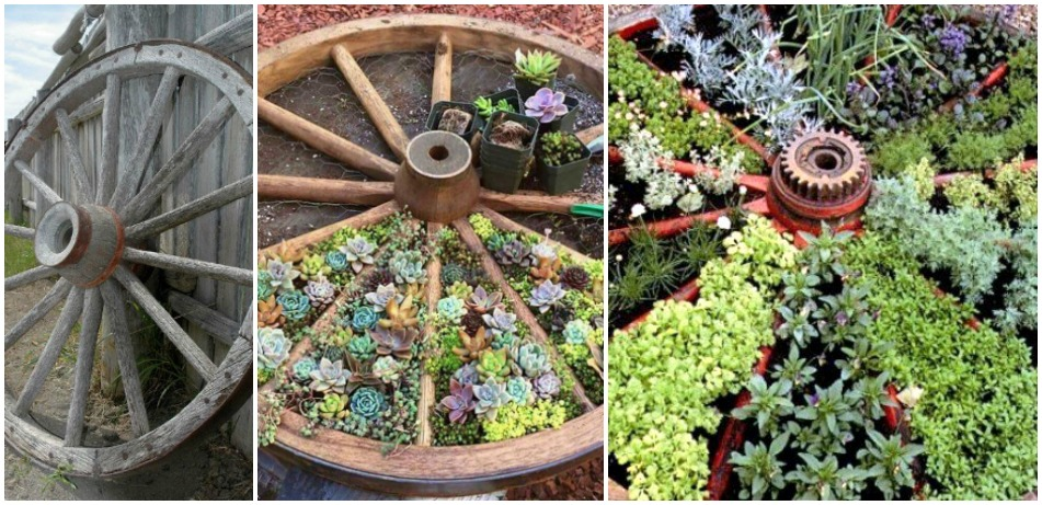 Wagon Wheel Garden Feat