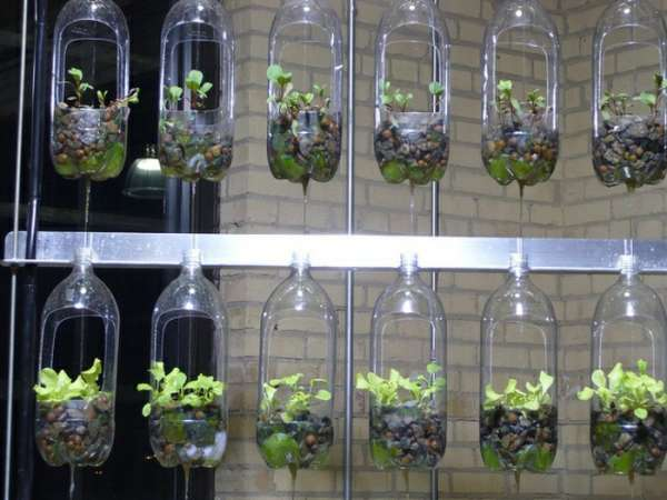 garden-design-used-plastic-bottles-hanging
