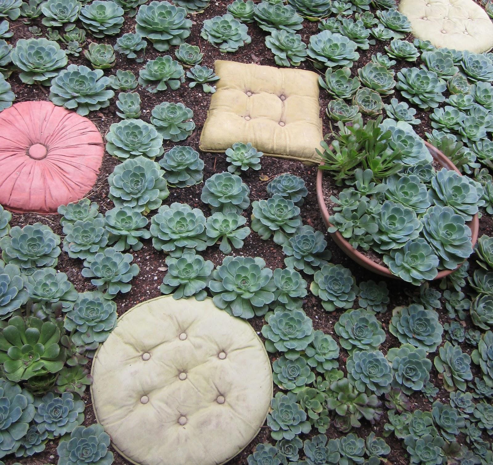succulentgardenblog 030 (2)