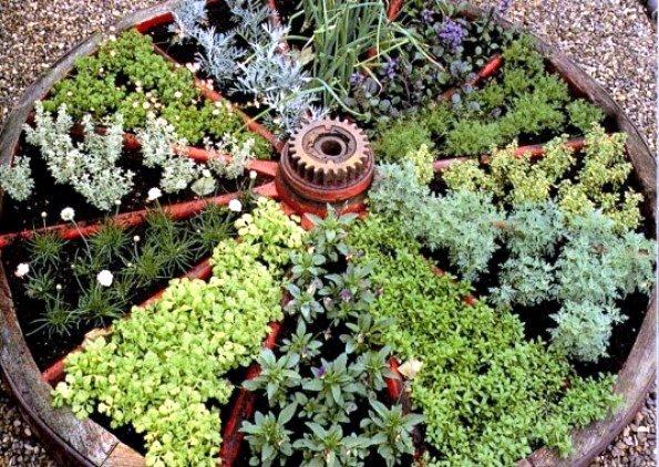 wagon_wheel_herbs
