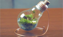 When You See What He Have Done From An Old Bulb, You Will Immediately Roll Up Your Sleeves…