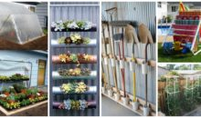 15 Creative Uses Of PVC Pipes In Your Garden&Home
