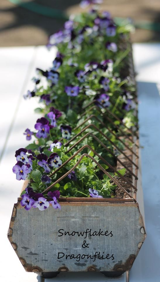 Gutter Garden Ideas 03